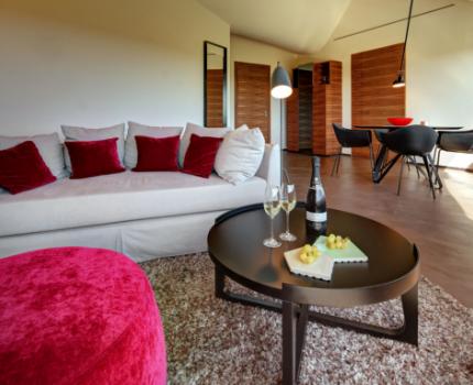 espacios habitación Mastinell hotel con bodega