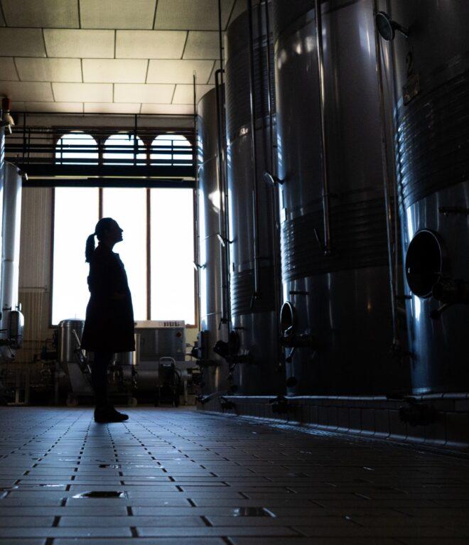 coupage de los vinos