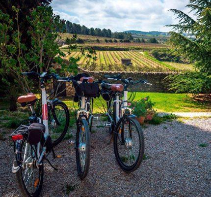 hotel_servicios_bicicleta_interior_03